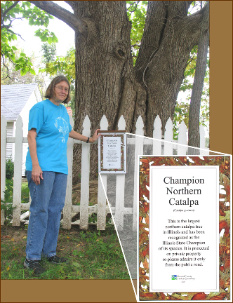Edie Sternberg with the plaque for the Catalpa tree