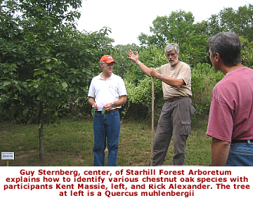 Guy Sternberg explains how to identify various oak species